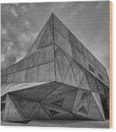 Tel Aviv Museum  Wood Print