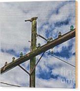 Telegraph Pole - Yesterdays Technology Wood Print
