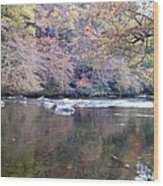 Tellico River In Fall Wood Print