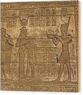 Temple At Denderah Egypt Wood Print by Brenda Kean