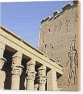 Temple At Philae In Egypt Wood Print