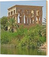 Temple Of Isis Among The Trees Wood Print