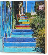 Templeman Street Valparaiso Chile Wood Print