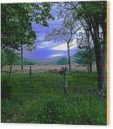 Tendar Morning Wood Print