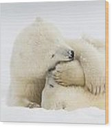 Tender Embrace Wood Print by Tim Grams
