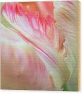 Tender Wood Print by Kathy Yates