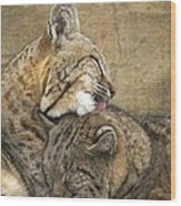 Tender Loving Care Wood Print by Teresa Schomig
