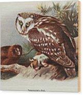 Tengmalms Owl Wood Print