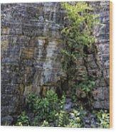 Tennessee Limestone Layer Deposits Wood Print