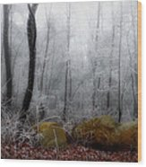 Tennessee Mountain Frost Wood Print