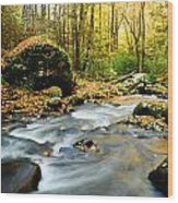 Tennessee Stream In Fall Wood Print