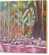 Terania Creek Wood Print
