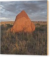 Termite Mound, Exmouth Western Wood Print