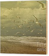 Terns In The Clouds Wood Print