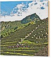 Terraces Of Machu Picchu-peru Wood Print