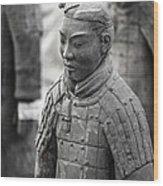 Terracotta Army Warriors In Xian China Wood Print