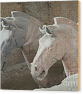 Terracotta Warrior Horses, China Wood Print