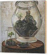 Terrarium Wood Print
