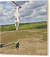 Terrier Ball Ballet Wood Print