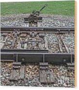 Switch Tracks Wood Print
