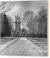 Testimonial Gateway Tower Wood Print