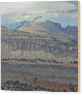 Teton Canyon Shelf Wood Print