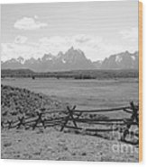 Teton Landscape With Fence - Black And White Wood Print