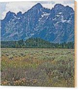 Teton Peaks And Flatland Near Jenny Lake In Grand Teton National Park-wyoming Wood Print