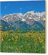 Teton Peaks And Flowers Wood Print