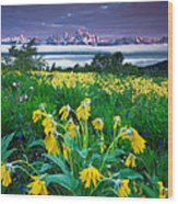Teton Spring Wildflowers Wood Print by Jerry Patterson