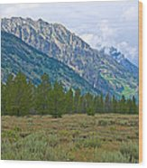 Tetons Above The Meadow In Grand Teton National Park-wyoming Wood Print