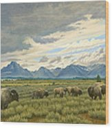 Tetons-buffalo  Wood Print
