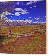 Tetons From Antelope Flats Wood Print
