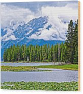Tetons From Heron Pond In Grand Teton National Park-wyoming Wood Print