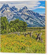Tetons In The Spring Wood Print