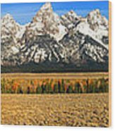 Tetons Panorama Wood Print
