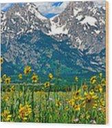 Tetons Peaks And Flowers Center Panel Wood Print