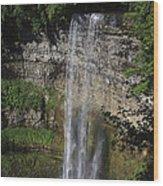 Tews Falls Wood Print