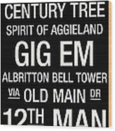 Texas A And M College Town Wall Art Wood Print