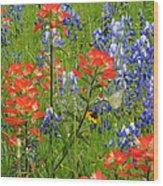 Texas Best Wildflowers Wood Print