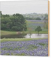 Texas Bluebonnets And Lake Wood Print by Ellen Howell