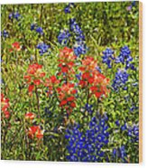 Texas Bluebonnets And Red Indian Paintbrush Wood Print