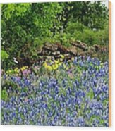 Texas Bluebonnets And Stone Wall Wood Print