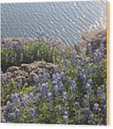 Texas Bluebonnets At Lake Travis Wood Print by Rebecca Cearley