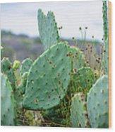Texas Cactus Wood Print