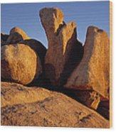 Texas Canyon Golden Boulders Wood Print