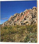 Texas Canyon Wood Print