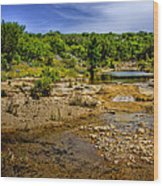 Texas Hill Country Stream Wood Print by David and Carol Kelly
