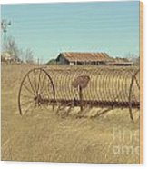 Texas Hill Country Farmscape Wood Print