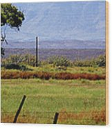 Texas Landscape 16095 Wood Print